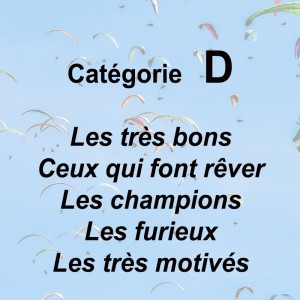 CATEGORIE D